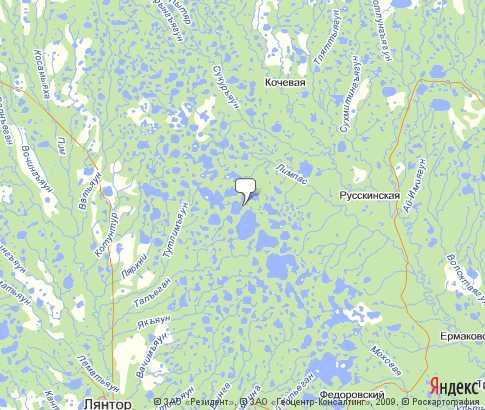 Карта: Сургутский