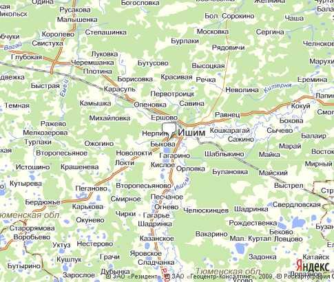 Подробная карта Ишимского